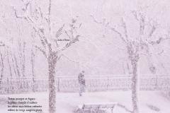 Quai Capo d'Istria, Genève. Un homme dans la neige. Poème à l'hiver.