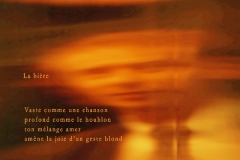 Robert Fred / poésie / Photèmes